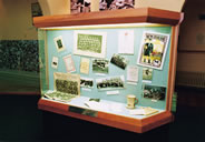 Display case at the museum